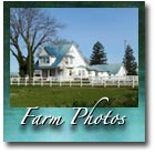 Farm Photos